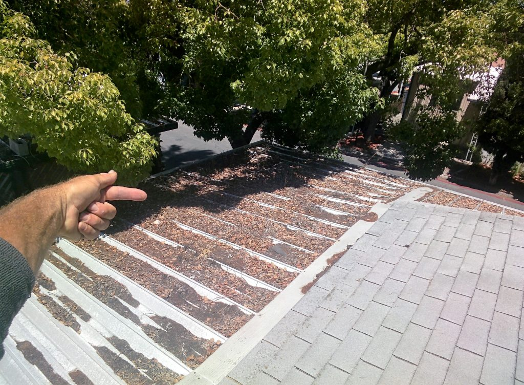 trim your trees as a part of roof maintenance